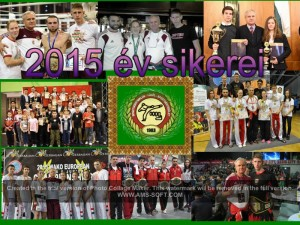 2015 ev sikerei